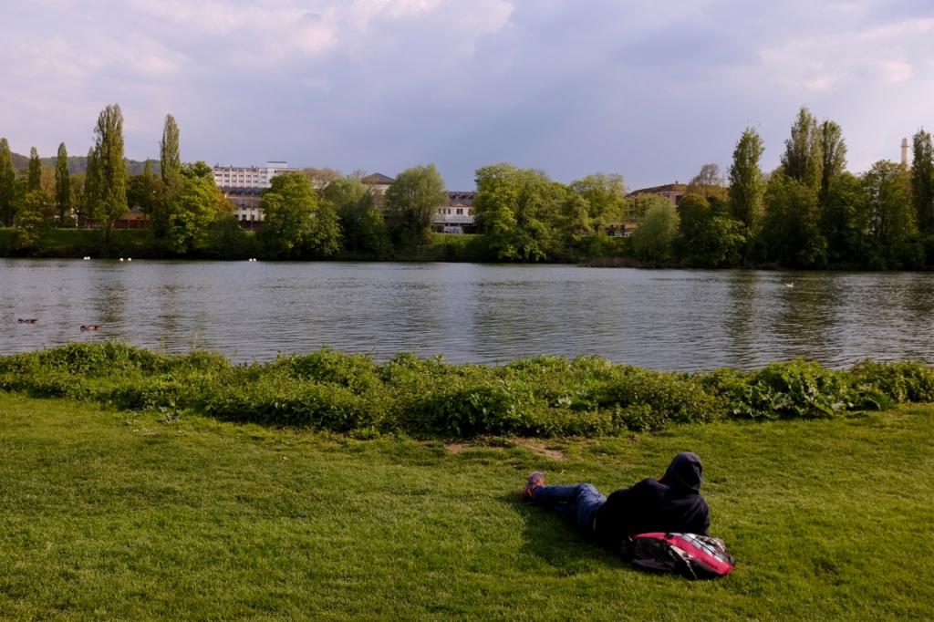 Neckarwiese